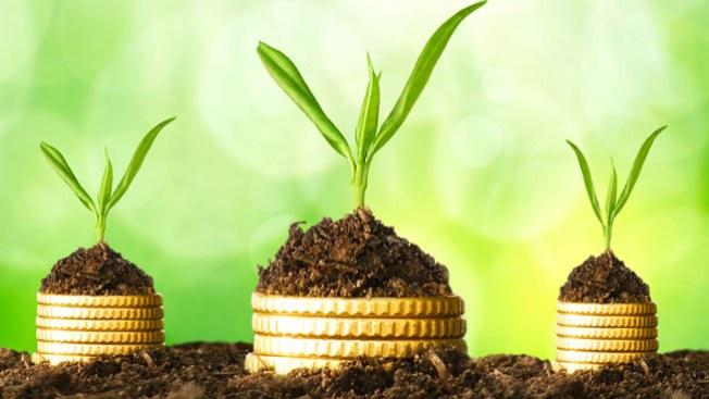 Rituales para atraer la prosperidad