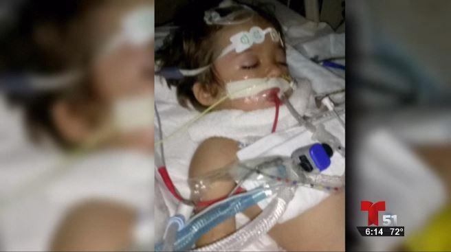 Muere niño de Florida tras contraer rabia por murciélago