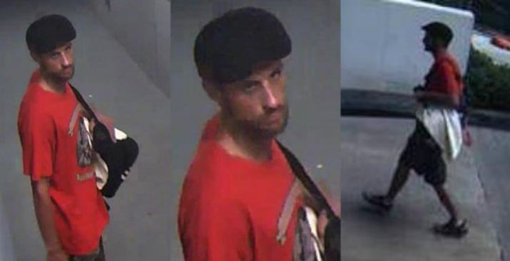 Capturado presunto ladrón de rifles AR-15 en Miami